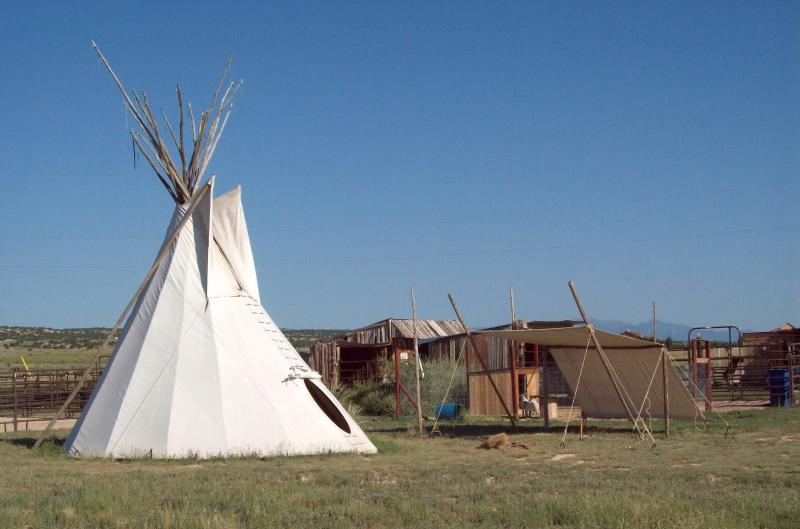 Our Tipi Set Up by the Horses