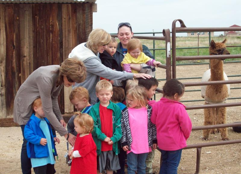 A Local Day-Care Visits High Plains Alpaca Ranch, LLC